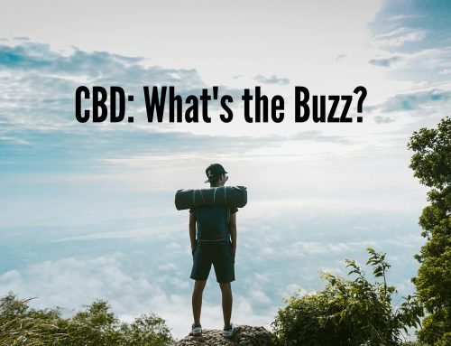 CBD: What's the Buzz?