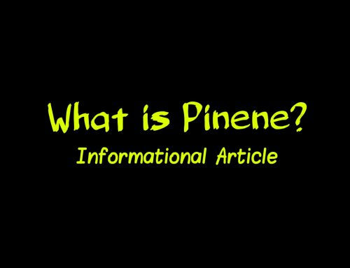 What is Pinene?