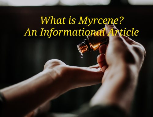 What is Myrcene?
