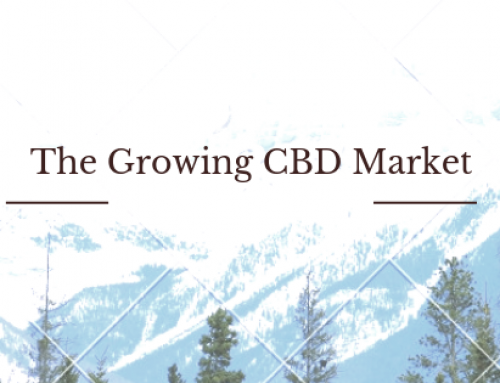 The Growing CBD Market