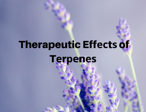 Therapeutic Effесtѕ of Tеrреnеѕ