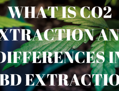 WHAT IS CO2 EXTRACTION AND DIFFERENCES IN CBD EXTRACTION