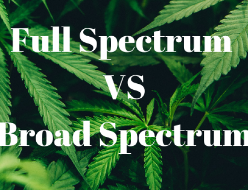 Full Spectrum CBD VS Broad Spectrum CBD